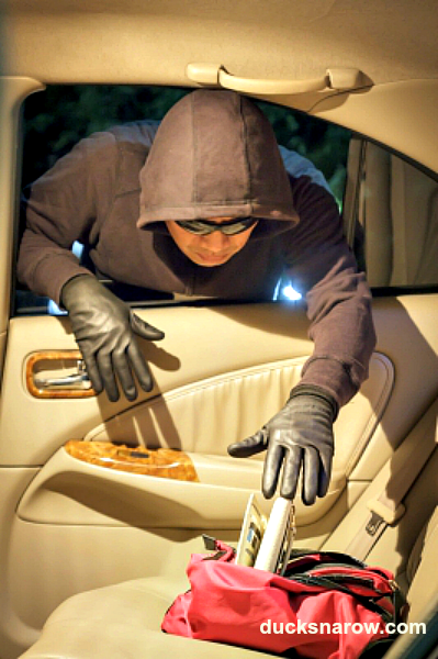 protect car from theft #burglar #auto-safety #homesafetytips Ducks 'n a Row