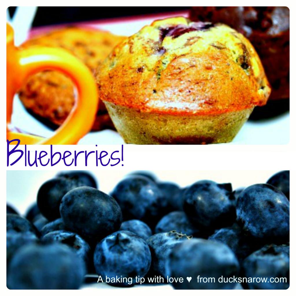 beautiful blueberry muffins