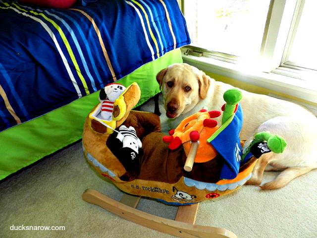 yellow labrador retriever, pirate ship toy for #kids