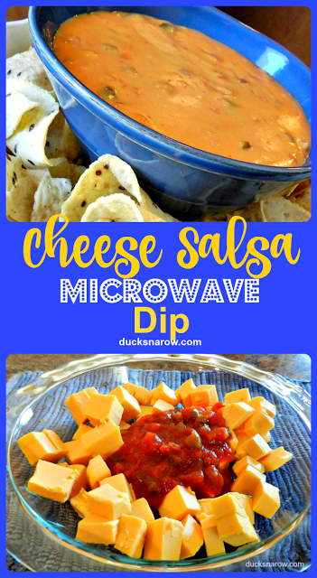 appetizers, party food, microwave recipes, cheese dip, salsa, corn chips