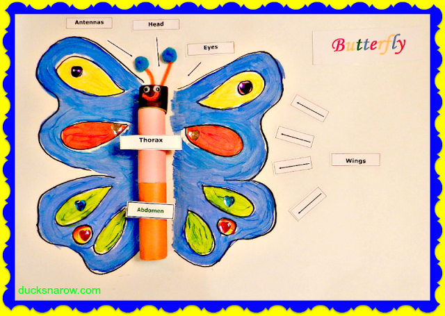 butterfly, caterpillar, letter B lessons