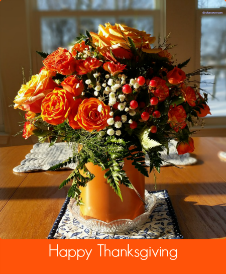 Happy Thanksgiving from Wonderful Wednesday Blog HOp