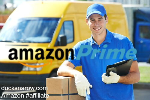 Simplify your life by getting Amazon Prime - free 2-day shipping on a multitude of items!