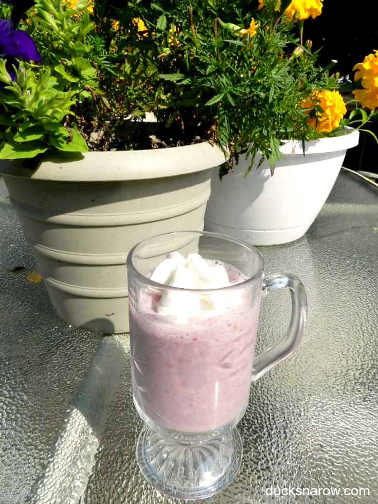 Berry Protein Low Carb Shake