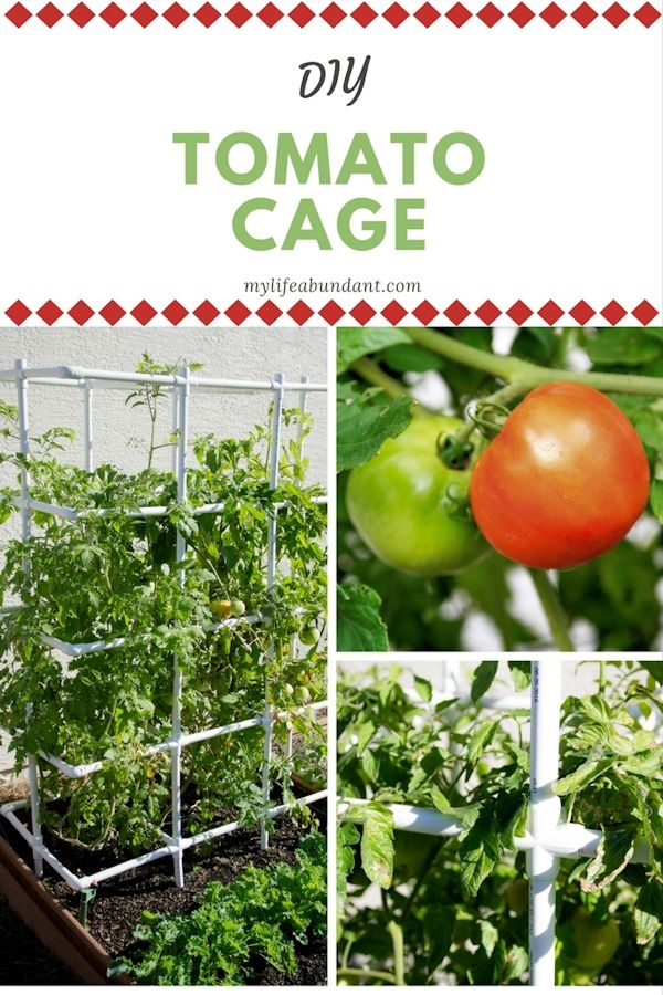 Heavy duty DIY tomato cage by My Life Abundant