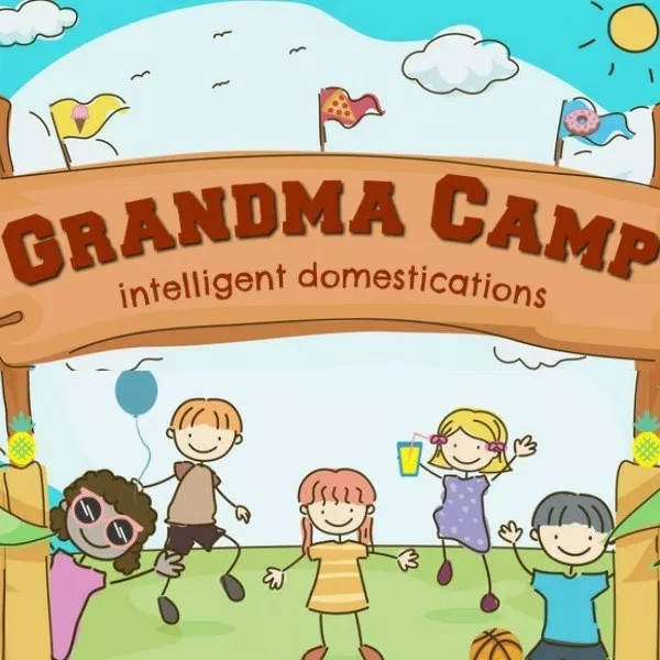 "Running a ""grandma camp?"" Here are some great ideas from Intelligent Domestications"
