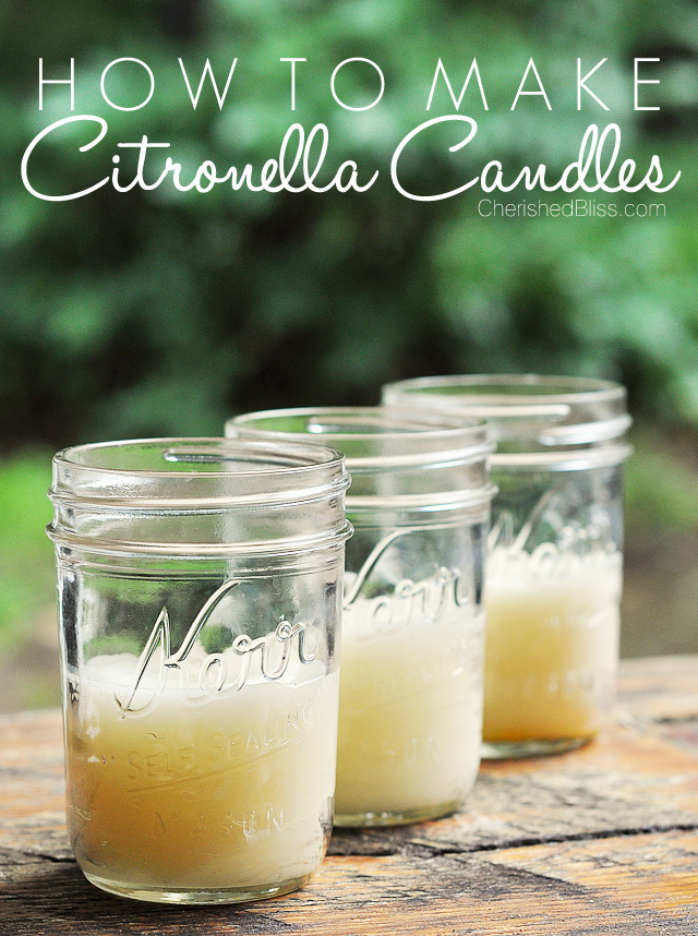 How to make citronella candles #DIY